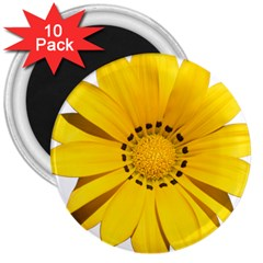 Transparent Flower Summer Yellow 3  Magnets (10 Pack)  by Simbadda