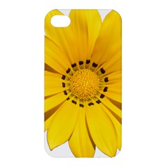 Transparent Flower Summer Yellow Apple Iphone 4/4s Premium Hardshell Case by Simbadda