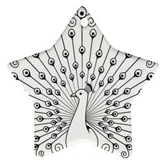 Bird Peacock Fan Animals Ornament (star) by Alisyart