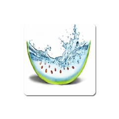 Fruit Water Slice Watermelon Square Magnet by Alisyart