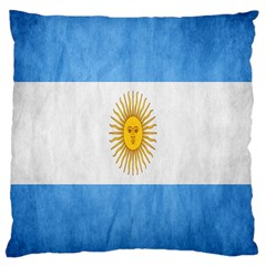 Argentina Texture Background Large Cushion Case (one Side) by Simbadda