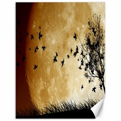 Birds Sky Planet Moon Shadow Canvas 18  X 24   by Simbadda