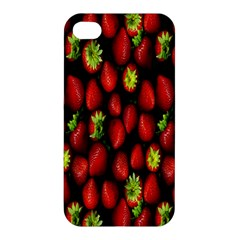 Berry Strawberry Many Apple Iphone 4/4s Hardshell Case by Simbadda