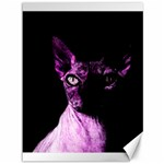 Pink Sphynx cat Canvas 36  x 48   48 x36 Canvas - 1