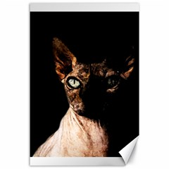 Sphynx Cat Canvas 24  X 36  by Valentinaart