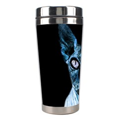 Blue Sphynx Cat Stainless Steel Travel Tumblers by Valentinaart