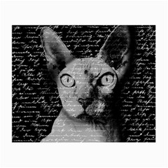 Sphynx Cat Small Glasses Cloth (2 Side)