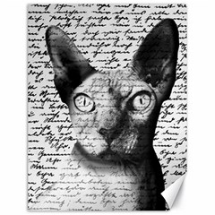 Sphynx Cat Canvas 18  X 24   by Valentinaart