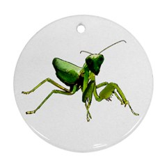 Mantis Round Ornament (two Sides) by Valentinaart