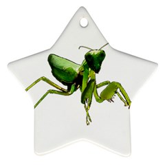 Mantis Star Ornament (two Sides) by Valentinaart