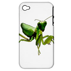 Mantis Apple Iphone 4/4s Hardshell Case (pc+silicone) by Valentinaart