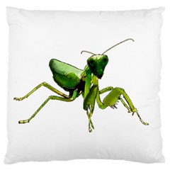 Mantis Standard Flano Cushion Case (two Sides) by Valentinaart