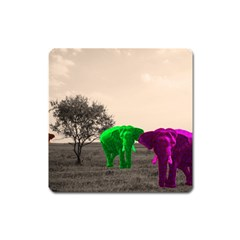 Africa  Square Magnet by Valentinaart