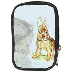 Rabbit  Compact Camera Cases by Valentinaart