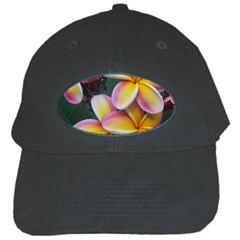 Premier Mix Flower Black Cap by alohaA