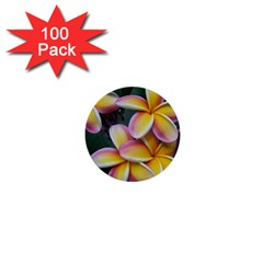 Premier Mix Flower 1  Mini Buttons (100 Pack)  by alohaA