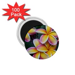 Premier Mix Flower 1 75  Magnets (100 Pack)  by alohaA
