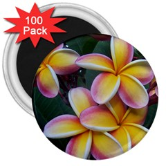 Premier Mix Flower 3  Magnets (100 Pack) by alohaA