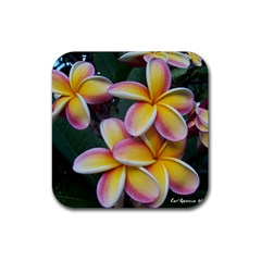 Premier Mix Flower Rubber Square Coaster (4 Pack)  by alohaA