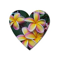 Premier Mix Flower Heart Magnet by alohaA