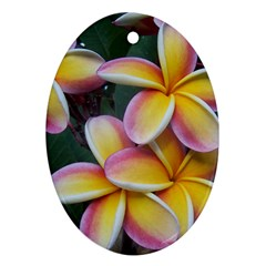 Premier Mix Flower Oval Ornament (two Sides) by alohaA