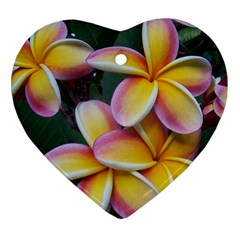 Premier Mix Flower Heart Ornament (two Sides) by alohaA