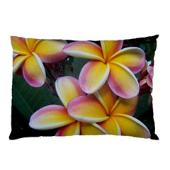 Premier Mix Flower Pillow Case by alohaA