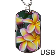 Premier Mix Flower Dog Tag Usb Flash (two Sides) by alohaA