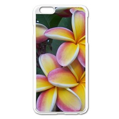 Premier Mix Flower Apple Iphone 6 Plus/6s Plus Enamel White Case by alohaA