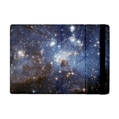 Large Magellanic Cloud Apple Ipad Mini Flip Case by SpaceShop