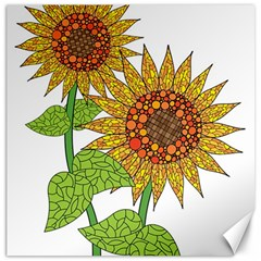Sunflowers Flower Bloom Nature Canvas 16  X 16   by Simbadda