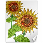 Sunflowers Flower Bloom Nature Canvas 36  x 48   48 x36  Canvas - 1