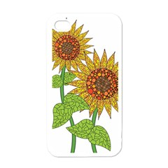 Sunflowers Flower Bloom Nature Apple Iphone 4 Case (white)