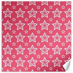 Star Pink White Line Space Canvas 20  X 20