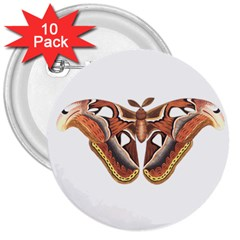 Butterfly Animal Insect Isolated 3  Buttons (10 Pack)  by Simbadda