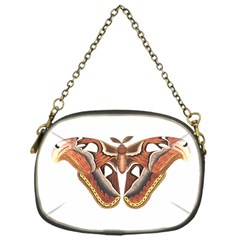 Butterfly Animal Insect Isolated Chain Purses (one Side)  by Simbadda