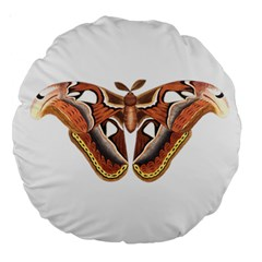 Butterfly Animal Insect Isolated Large 18  Premium Round Cushions by Simbadda