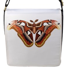 Butterfly Animal Insect Isolated Flap Messenger Bag (s) by Simbadda