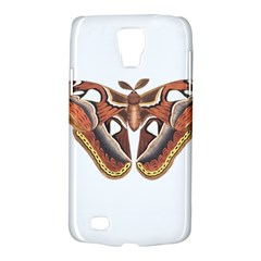 Butterfly Animal Insect Isolated Galaxy S4 Active