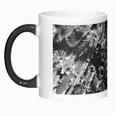 Fern Raindrops Spiderweb Cobweb Morph Mugs by Simbadda