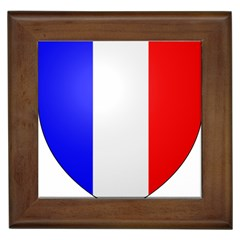 Shield On The French Senate Entrance Framed Tiles by abbeyz71