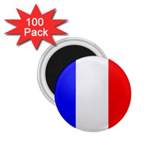 Shield On The French Senate Entrance 1 75  Magnets (100 Pack)  by abbeyz71