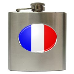 Shield On The French Senate Entrance Hip Flask (6 Oz) by abbeyz71
