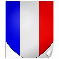Shield On The French Senate Entrance Canvas 8  X 10  by abbeyz71