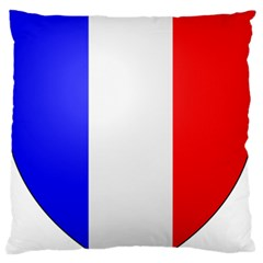 Shield On The French Senate Entrance Large Flano Cushion Case (two Sides) by abbeyz71