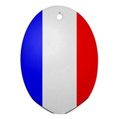 Shield On The French Senate Entrance Ornament (oval) by abbeyz71