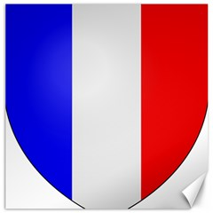 Shield On The French Senate Entrance Canvas 20  X 20   by abbeyz71