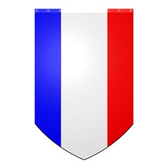 Shield On The French Senate Entrance Shower Curtain 48  X 72  (small)  by abbeyz71