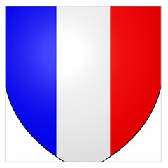 Shield On The French Senate Entrance Large Satin Scarf (square) by abbeyz71