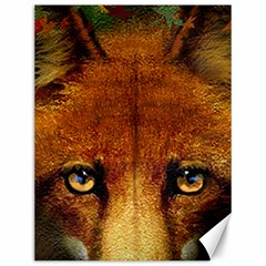 Fox Canvas 12  X 16   by Simbadda